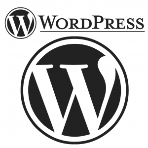 Website mit WordPress